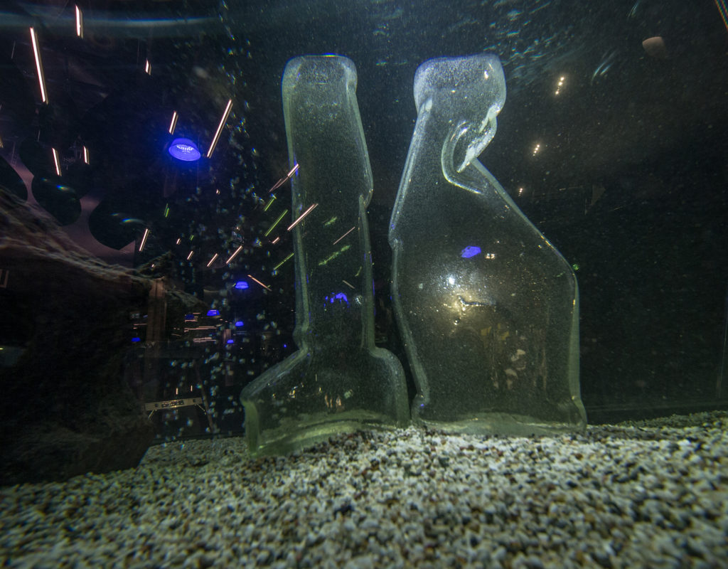'Tsivilisatsioon 2' EKKÜ aastanäitus Lennusadama akvaariumis 2016, foto M. Hiis